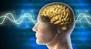 دانلود تحقیق حافظه